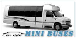 Mini Bus rental in San Antonio, TX
